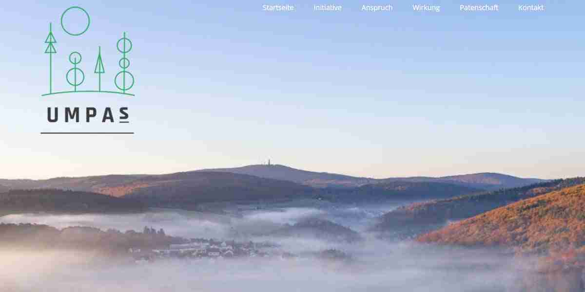 website initiative
